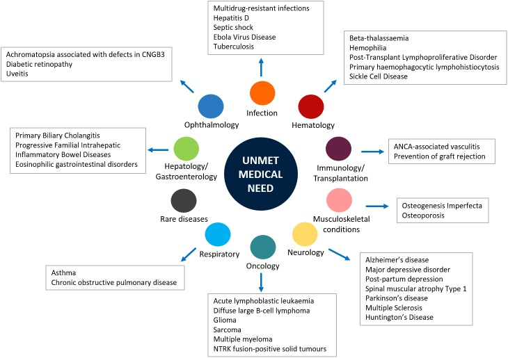The New Paradigms in Clinical Research: From Early Access Programs to the Novel Therapeutic Approaches for Unmet Medical Needs.